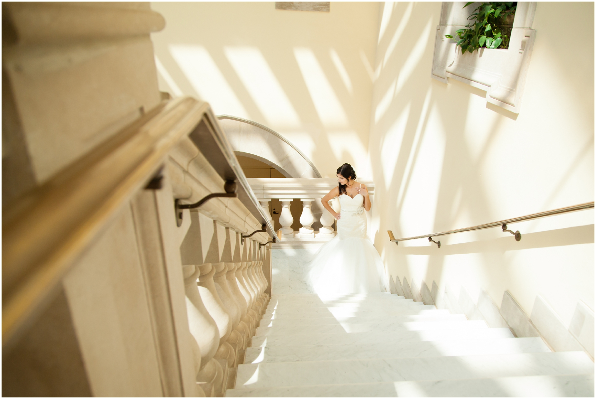 chrysler museum, norfolk virginia, sami roy photography, norfolk wedding photographer